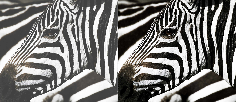 Optoma superior contrast